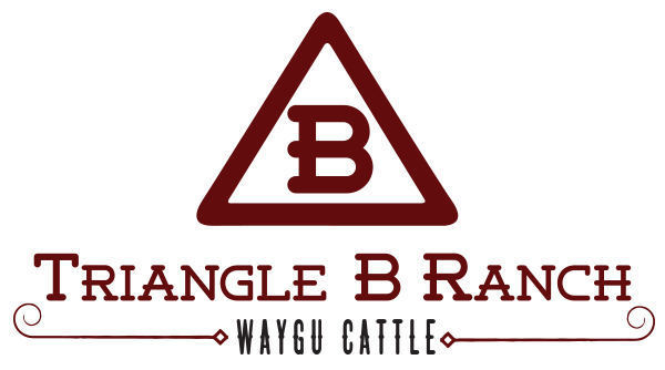 Triangle B Ranch